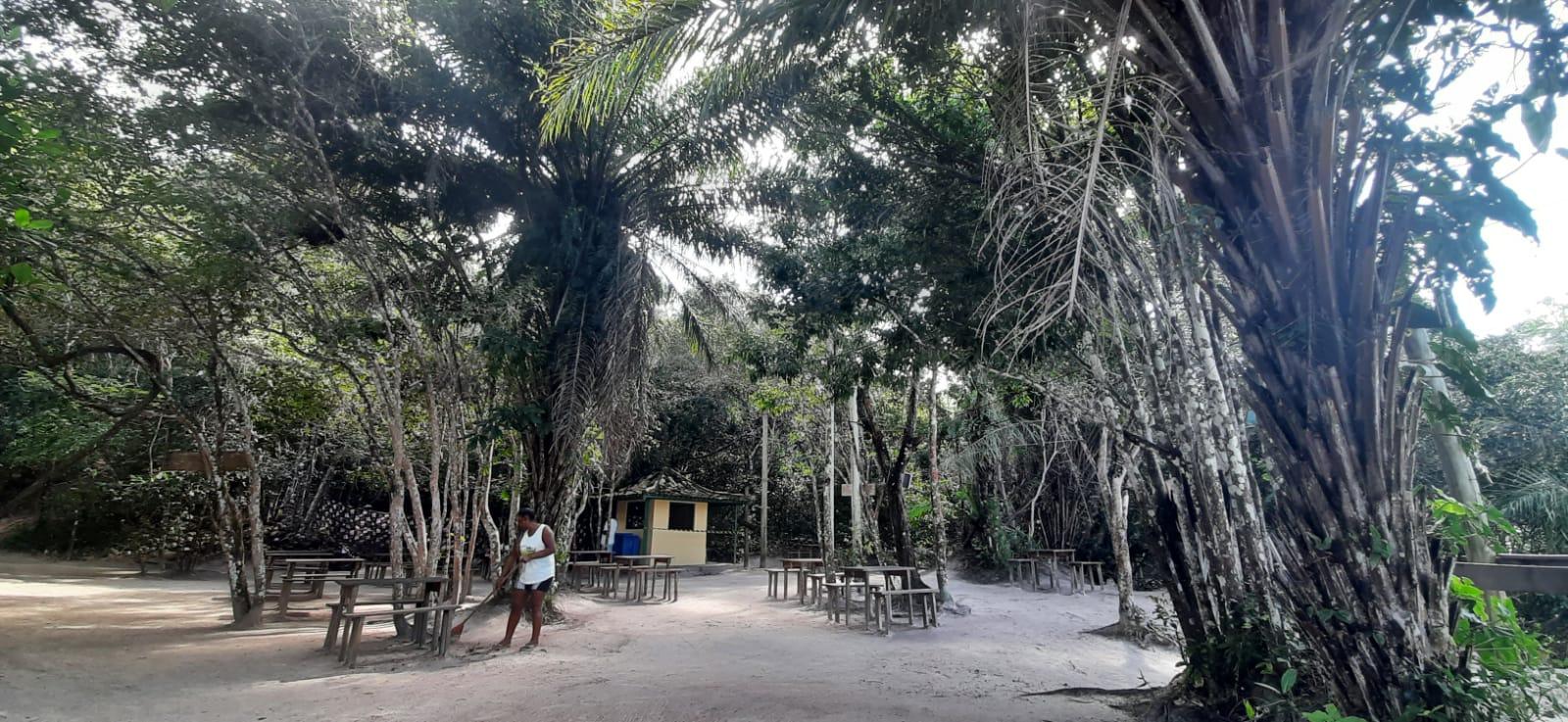 reserva sapiranga praia do forte bahia