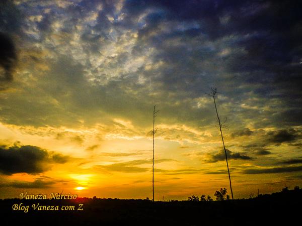 REFLEXÃO DE VIAGEM: região aurífera do Alto Tapajós (Pará)