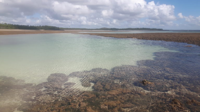Praias de Boipeba: trilha da Cueira até Bainema passando por Moreré