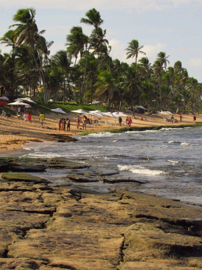 imbassaí e praia do forte bate volta
