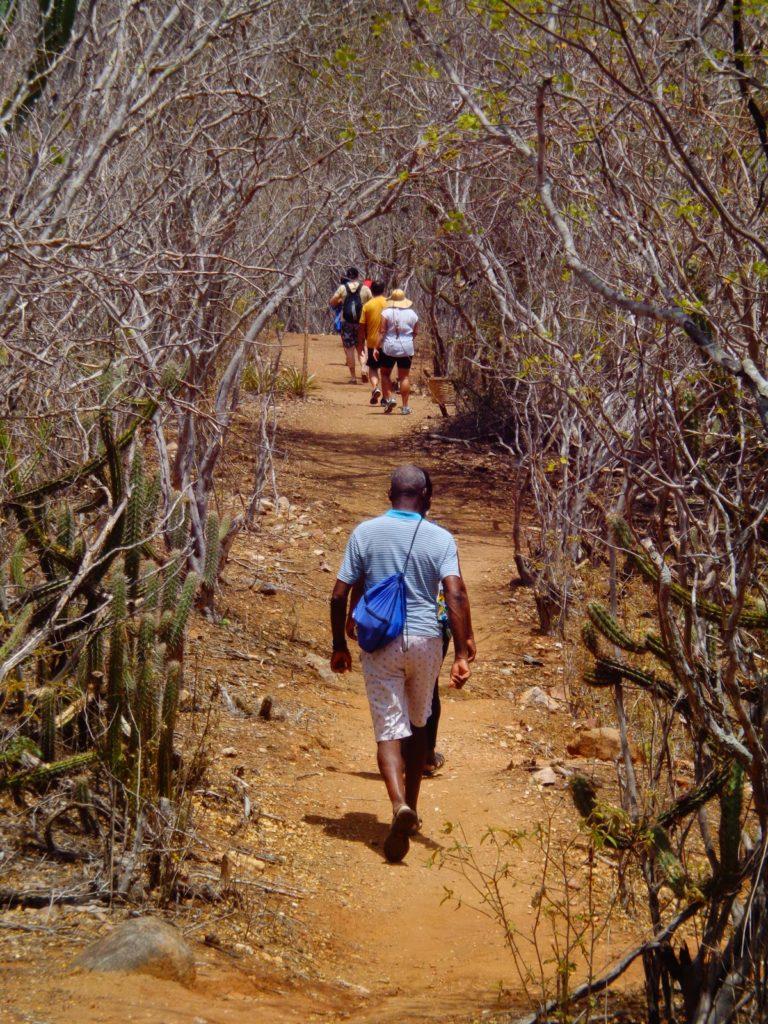 trilha eco park