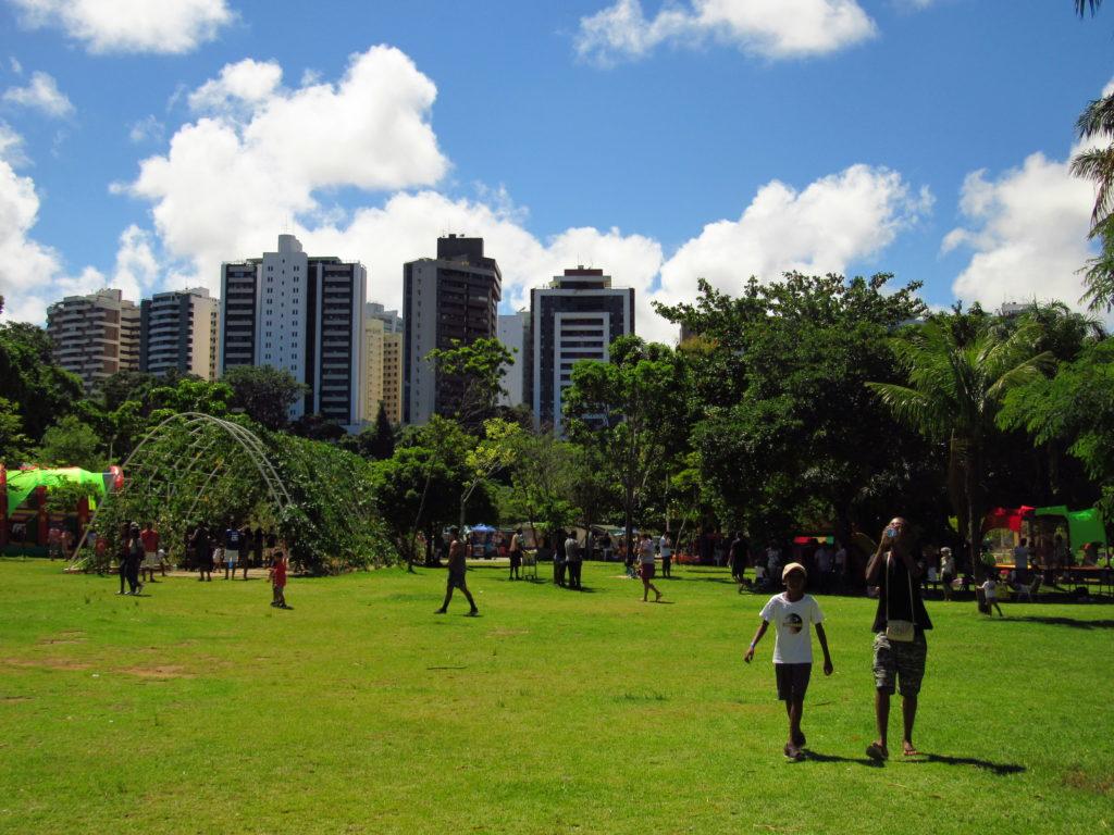 gramado e edificios ao redor do parque da cidade salvador