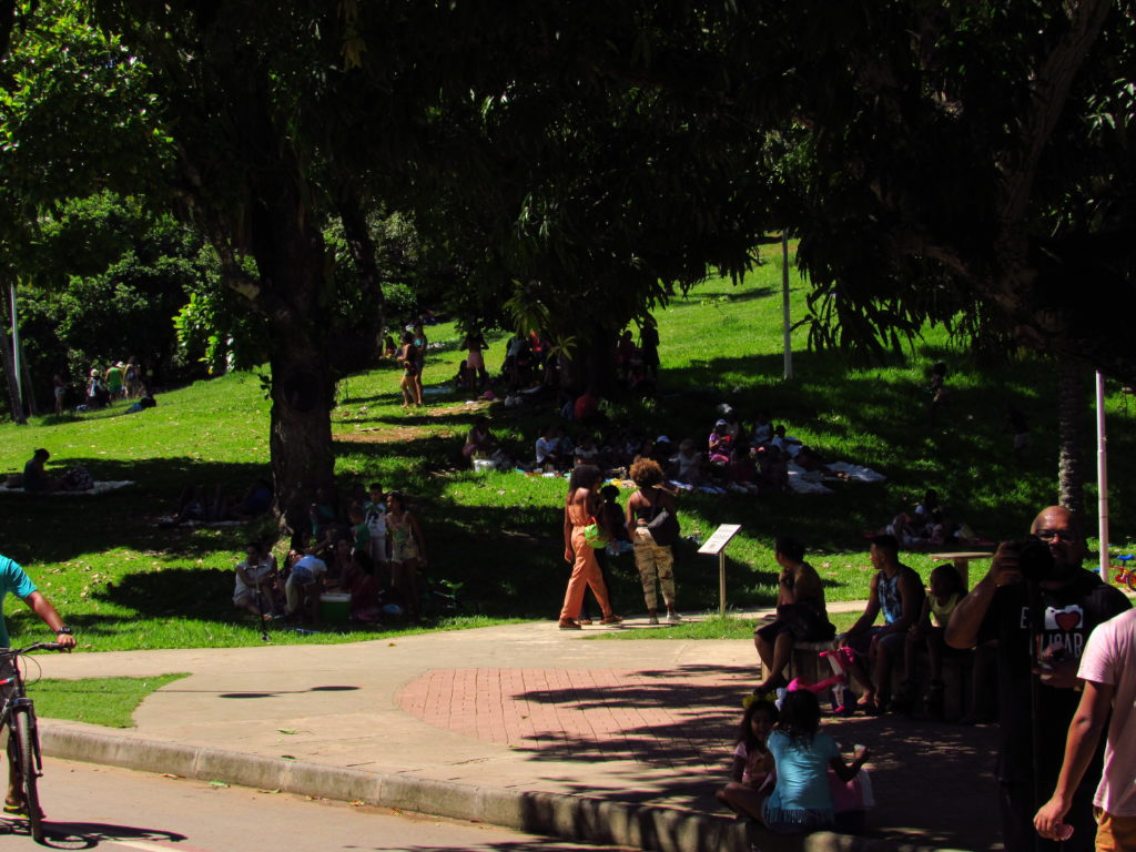 familias fazendo pic nic no parque da cidade salvador