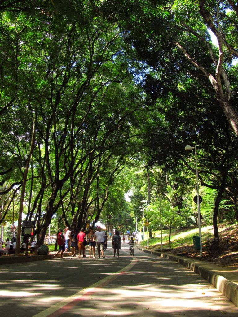 pessoas caminhando no parque da cidade salvador