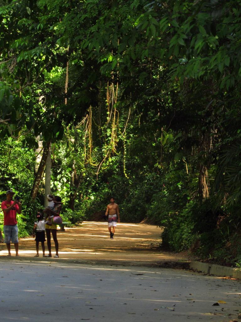 homem sem camisa fazendo trilha no parque da cidade salvador