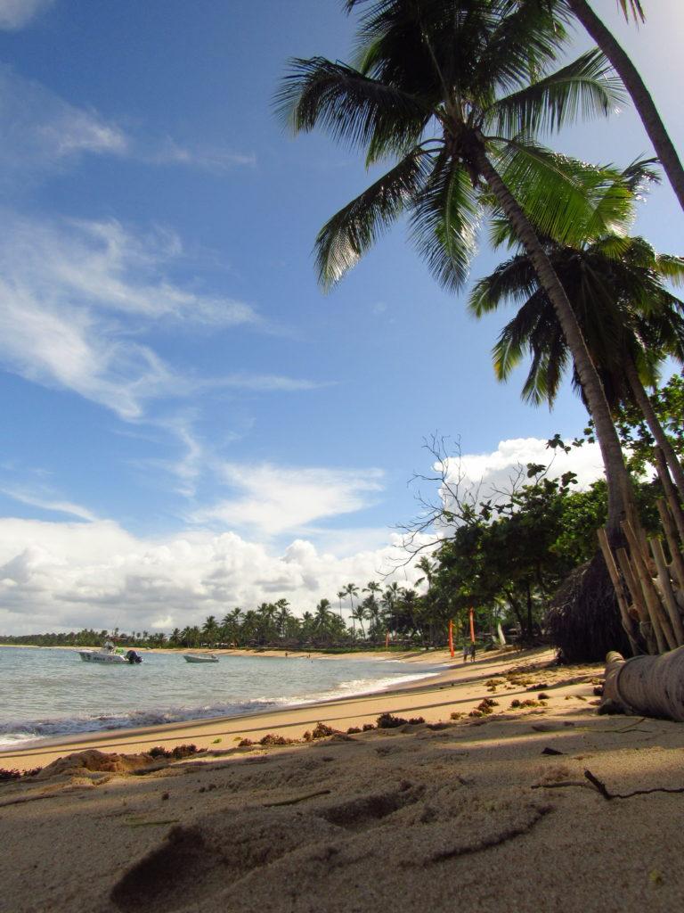 paisagem em frente lagosta na brasa em praia do forte
