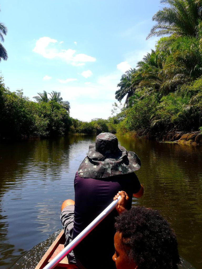 pantanal marimbus e piscinas rio roncador
