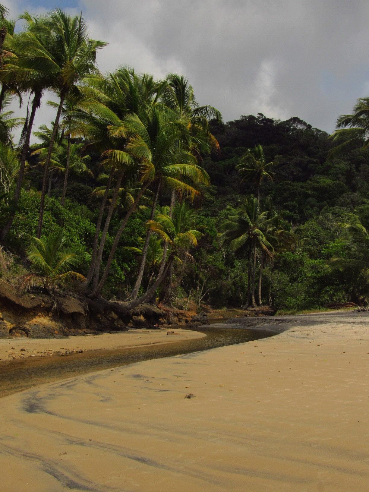 trilha das 4 praias em itacare bahia